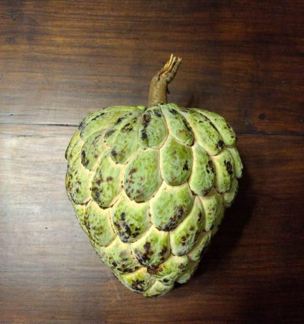 Saramuyo, il frutto che non ti aspetti