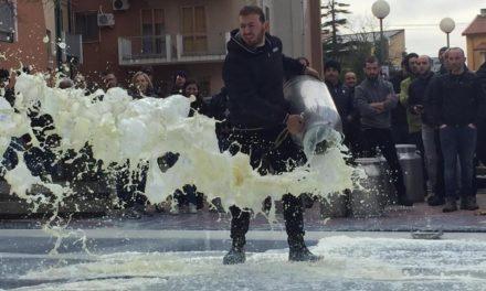 La rivolta del latte: premesse per un futuro migliore