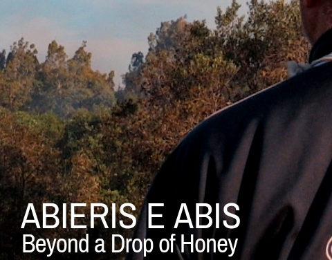Abieris e Abis. Beyond a Drop of Honey