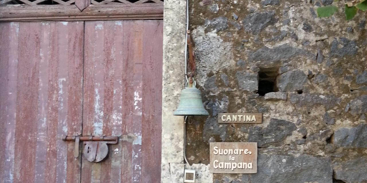 Il Carricante –  il Bianco dell'Etna