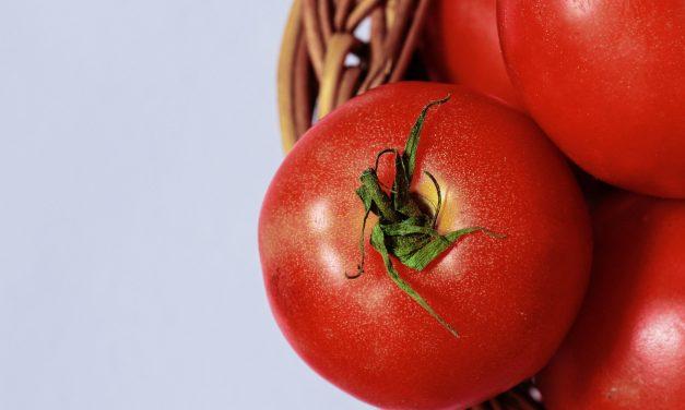 La contraddizione dei pomodori estivi